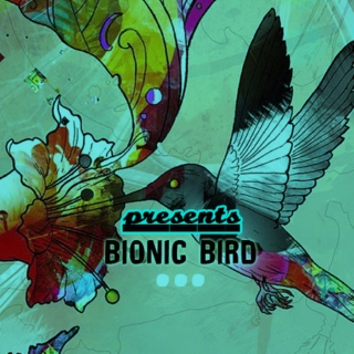 The Bionic Bird Sessions (1)