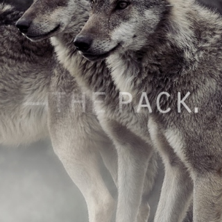 ―the pack.