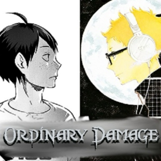 Ordinary Damage