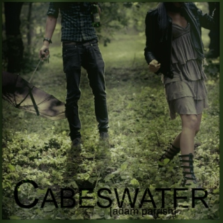 cabeswater [adam parrish][the raven cycle]