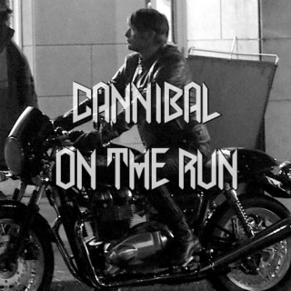 Cannibal On The Run