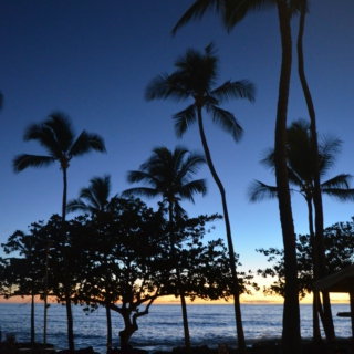Hawaiian Christmas, Three