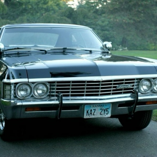 Songs for the Impala