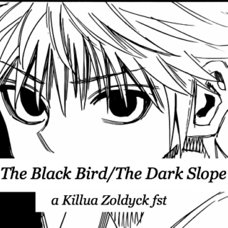 The Black Bird/The Dark Slope