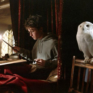 a harry potter study mix ϟ