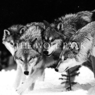 the wolf pack: disc 2
