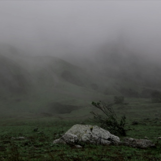 from the mist