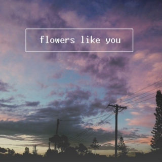 flowers like you