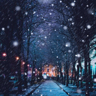 Lost in the winter air