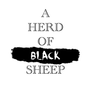 a herd of black sheep