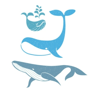 For Whales Only