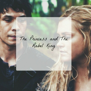 The Princess and the Rebel King
