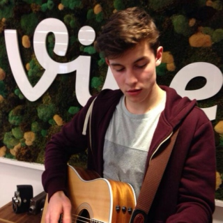 Shawn Mendes ツ