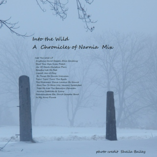 Into the Wild: Chronicles of Narnia pt1 (unofficial fan mix)