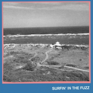 Surfin' In The Fuzz