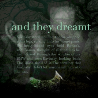 and they dreamt | a ronan & kavinsky mix