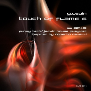 AW 2014-15 #66 Touch of Flame 6