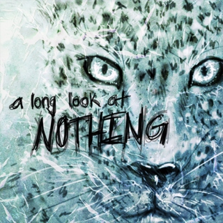 A Long Look at Nothing
