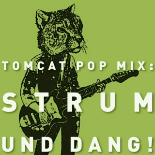 TomCat Pop Mix: Strum Und Dang!