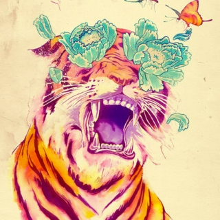 Blooming tiger