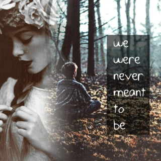 we were never meant to be