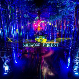 Electric Forest Mix