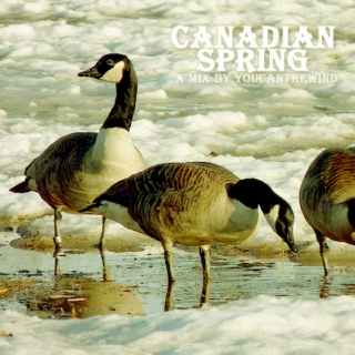 Spring Time Happy Fun Mix (Canadian Spring)