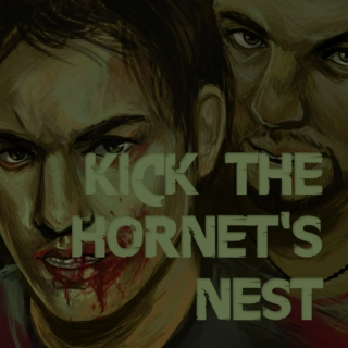 Kick the Hornet's Nest