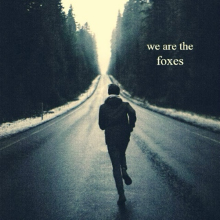 we are the foxes