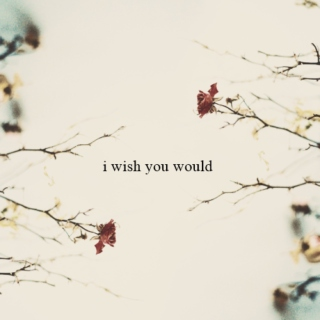 i wish you could