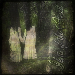 Ghosts of the Forest