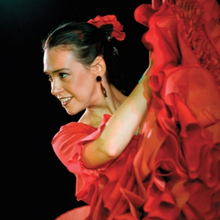Flamenco Dreams!