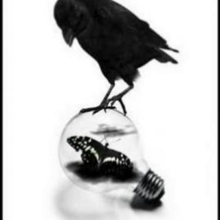 The Crow and The Butterfly
