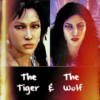 The Tiger & The Wolf