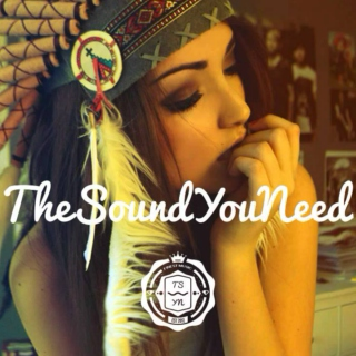 *The Sound You Need*