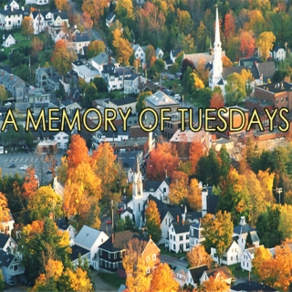 A Memory of Tuesdays