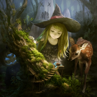 the witch's forest
