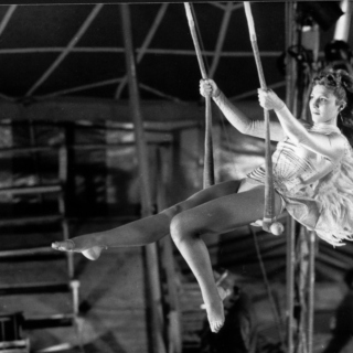 Wings of Desire (for the raven)