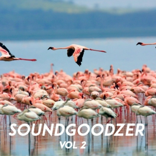 SOUNDGOODZER VOL 2