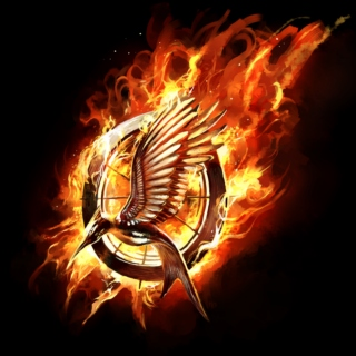 The Hunger Games Playlist 1: The Hunger Games
