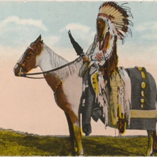 Plight Of The Native American