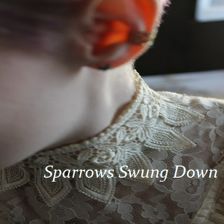 Sparrows Swung Down (3/4)