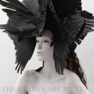 the crows are mute