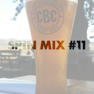 SPIN MIX #11