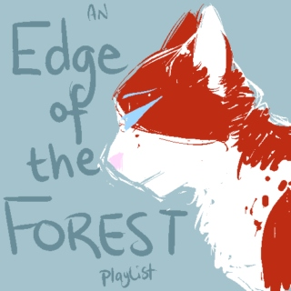 Edge of the Forest