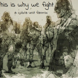 this is why we fight