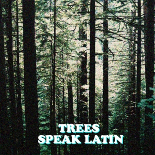 trees speak latin