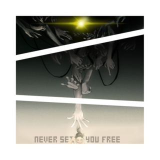 NEVER SET YOU FREE