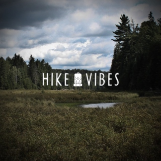 HIKEVIBES