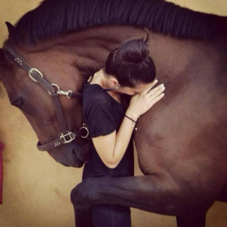 Life is short... hug your horse